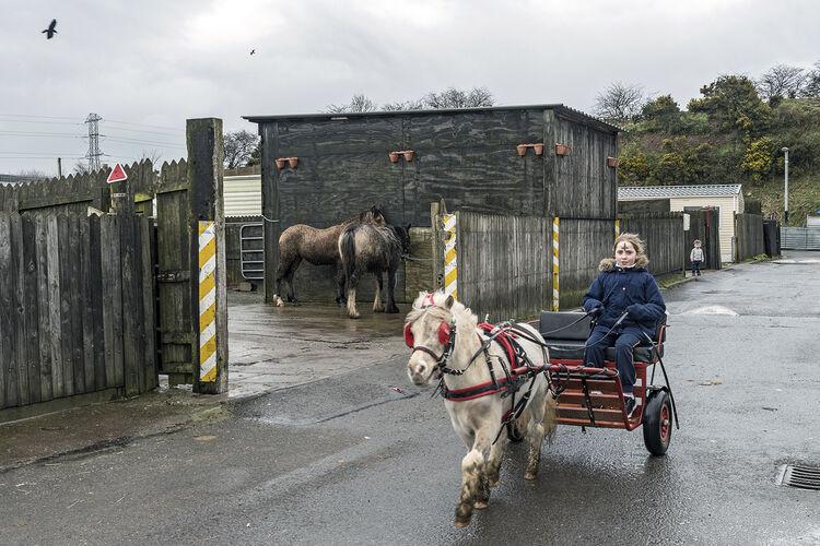 Caroline Rides The Sulky, Ash Wednesday, Cork, Ireland 2020