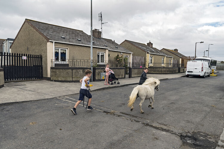 Children and Pony, Dublin 2019