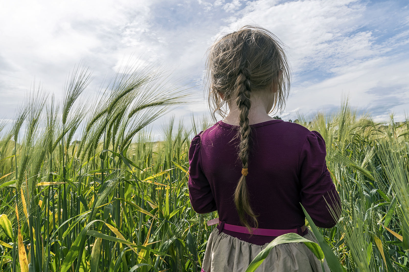 Diane in The Wheat Field, Tipperary, Ireland 2019