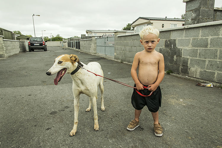 Boy and his pet lurcher, halting site, Limerick, Ireland 2018