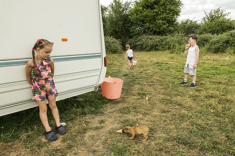 Ice Cream, roadside campsite, Limerick, Ireland 2018