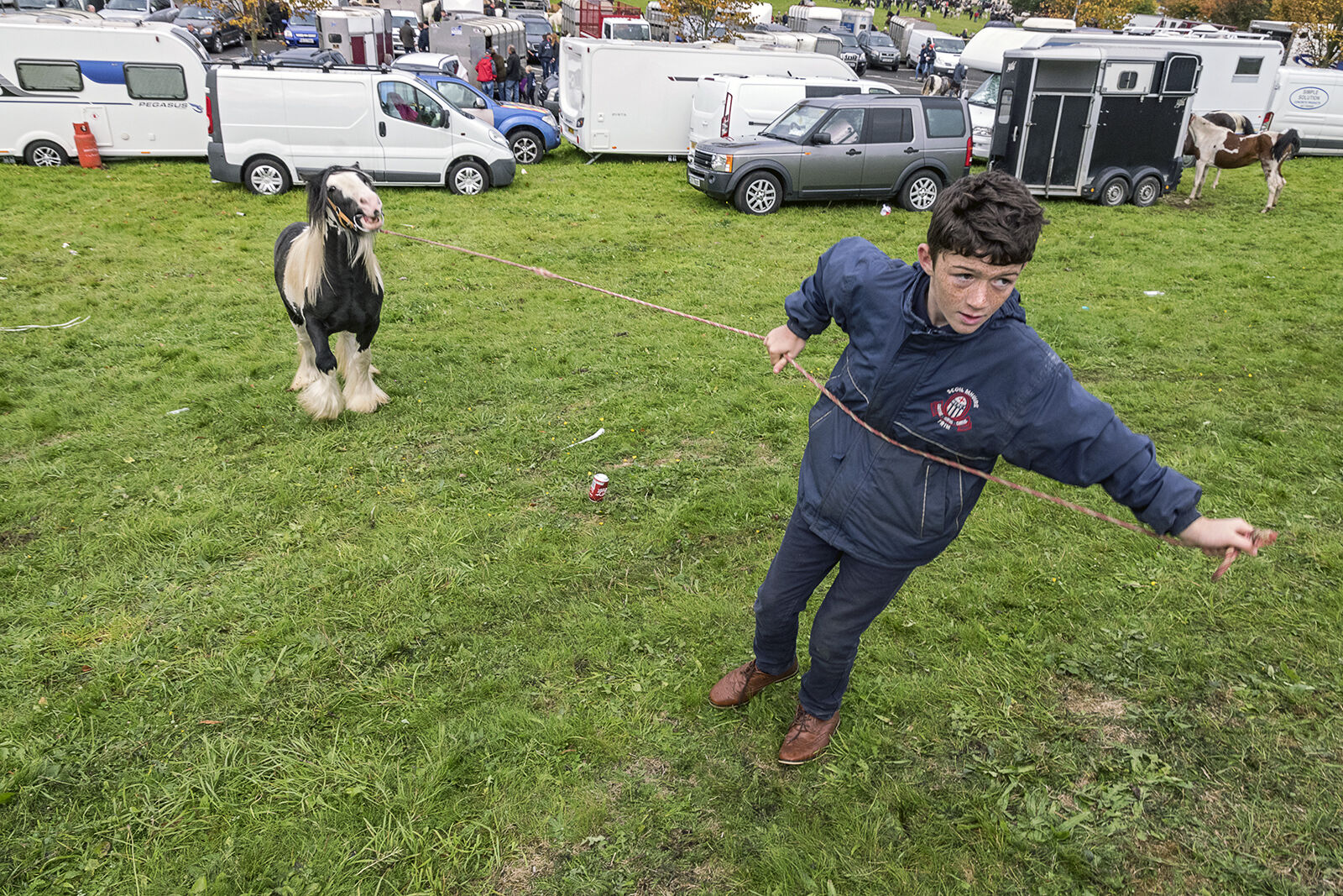 Larry Connors pulling his pony at Ballinasloe Horse fair, Galway, Ireland 2018