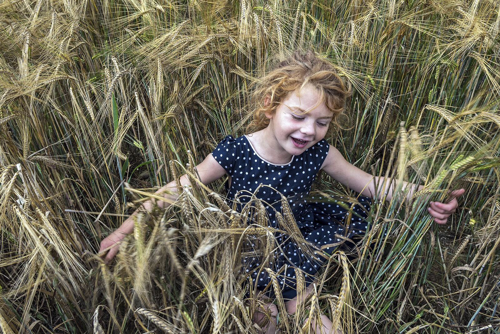 Maggie in Wheat Field, Tipperary, Ireland 2020