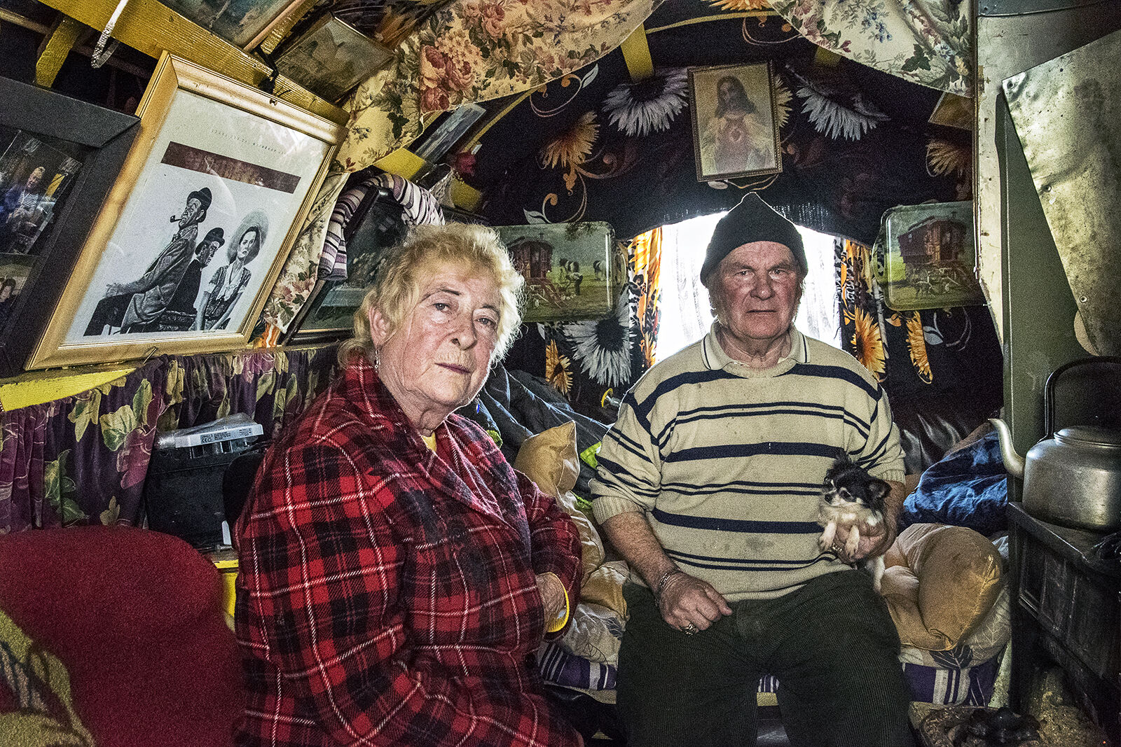 Nellie and Willie, roadside campsite, Tipperary, Ireland 2019
