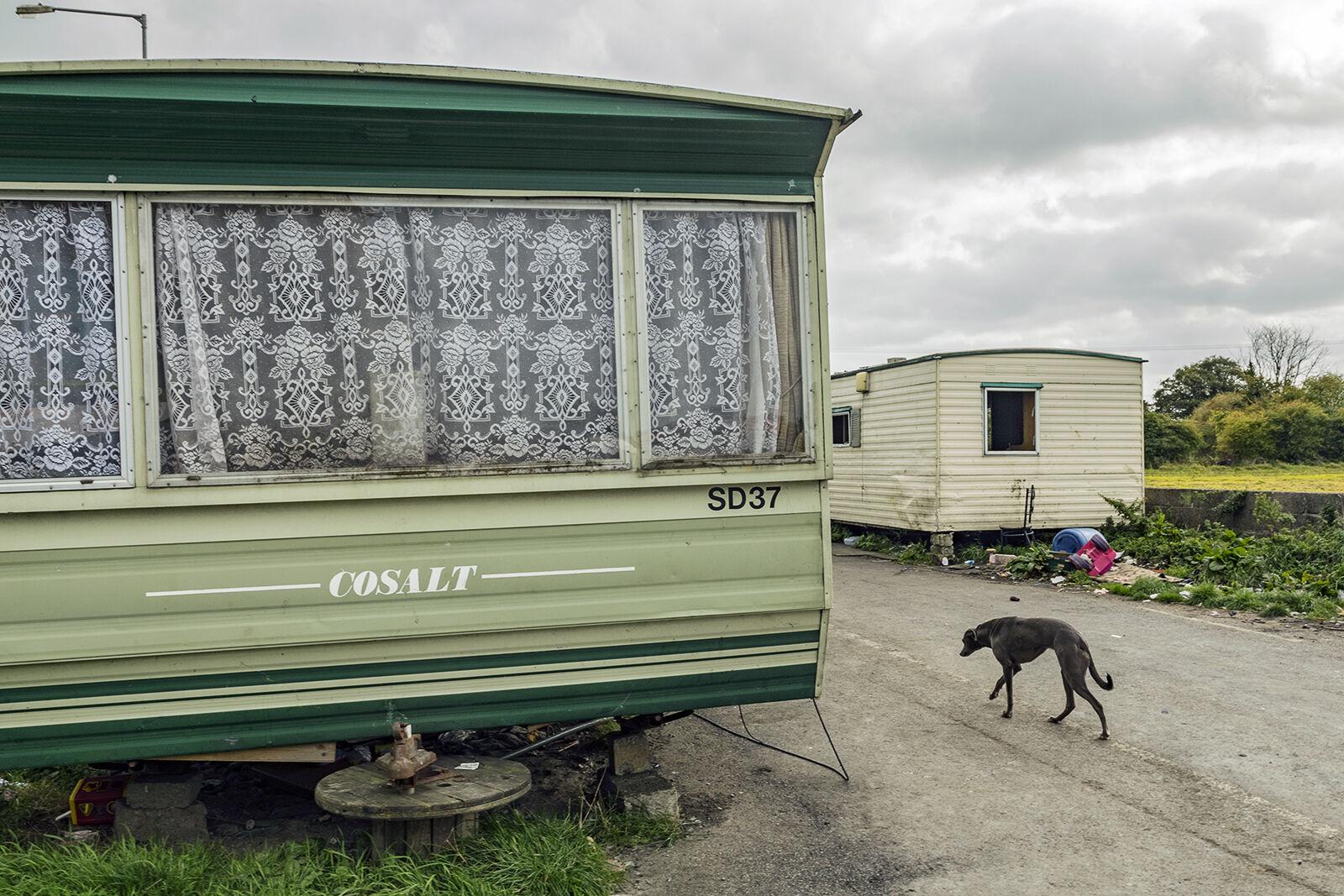Caravans and Lurcher, Tipperary, Ireland 2018