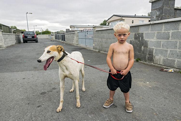 William and His Pet Lurcher, Limerick, Ireland 2018