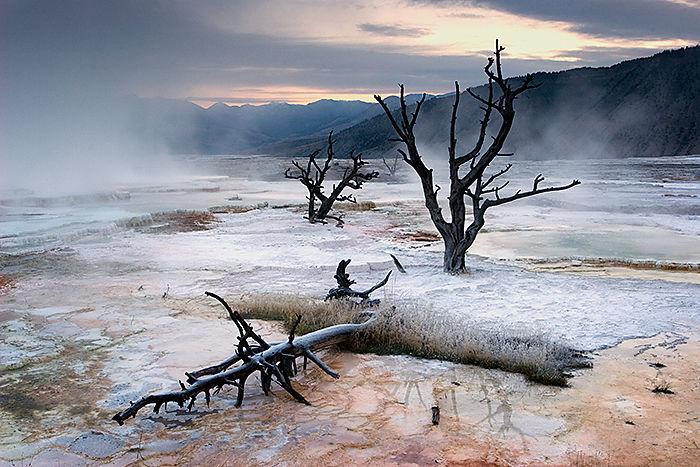 Mammoth Hot Springs (1)