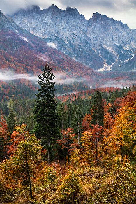 Mountain View Near Vrsic