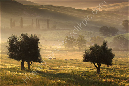 Val d'Orcia (1)