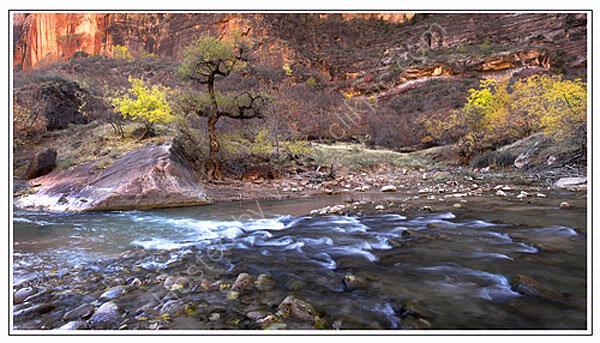 Virgin River - Zion