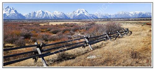 Fence near Cunningham Cabins