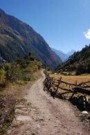 Trail near Syogoan, Manaslu
