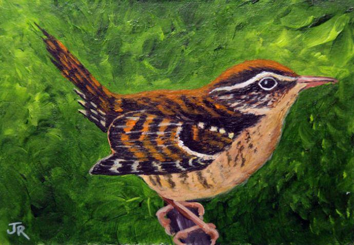 British bird Wren **Sold**