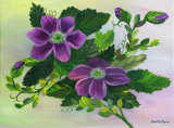 Clematis: **SOLD**