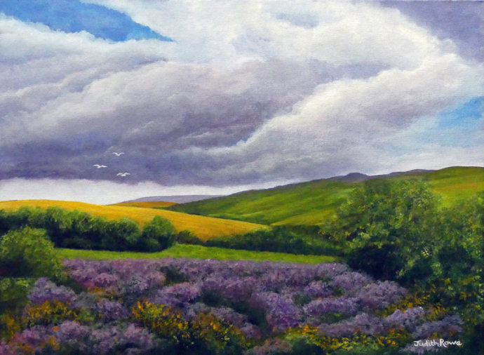 Exmoor: **SOLD**