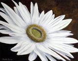 White Germini - £75.00