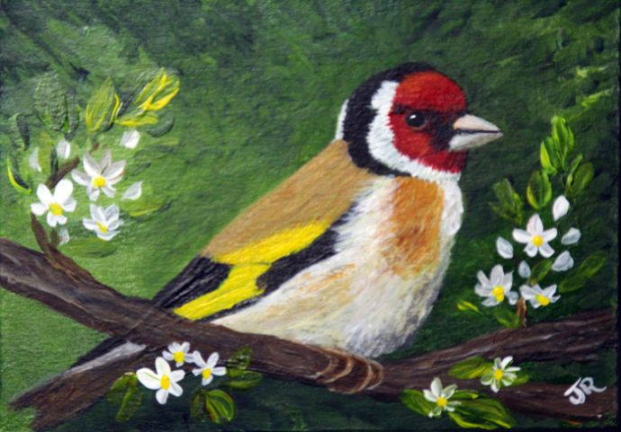 Goldfinch **Sold**