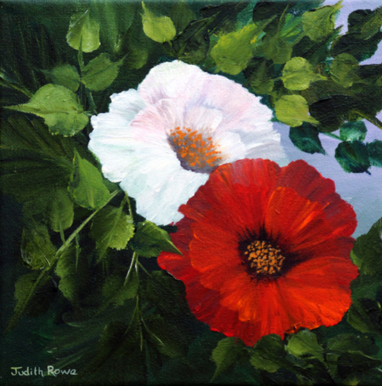 Poppies: **SOLD**