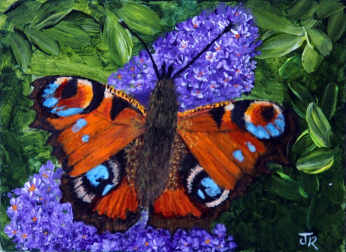 Peacock Butterfly **Sold**
