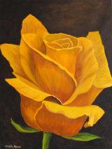 Yellow Rose - £75.00