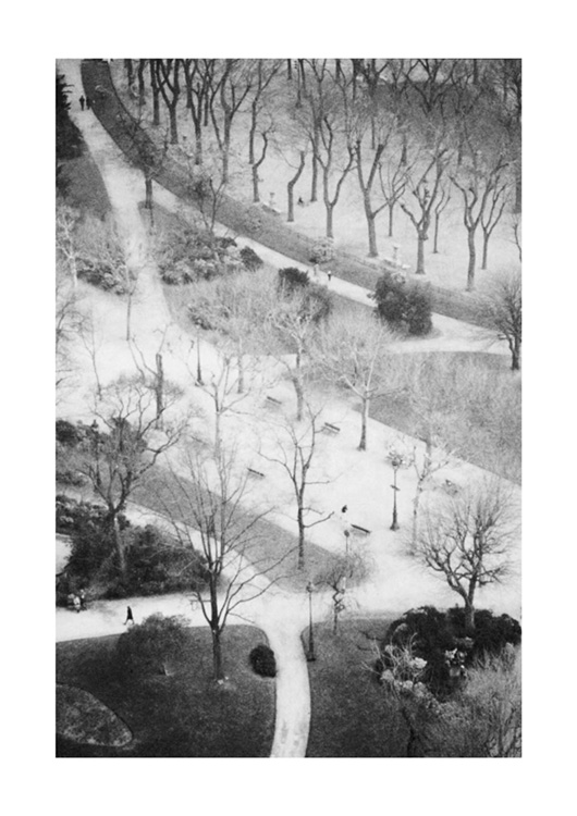 Park from Eifel Tower