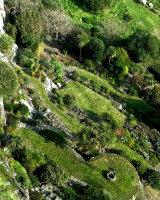 St Michaels Garden