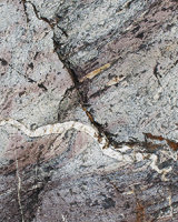 Rock Serpents
