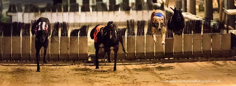 Race-8-steeplechase-18th-March-2017.-02