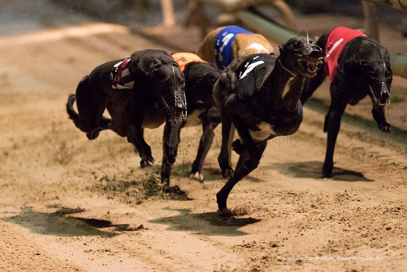 Race-8-steeplechase-18th-March-2017.-07