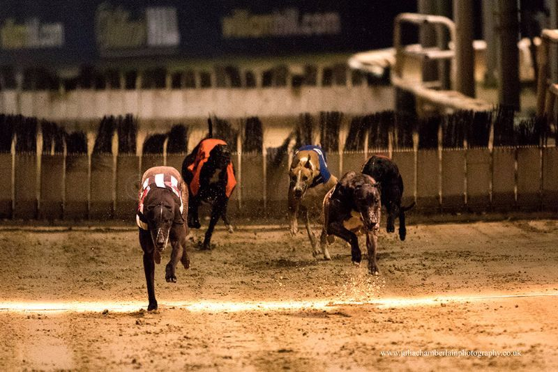 Race-8-steeplechase-18th-March-2017.-13