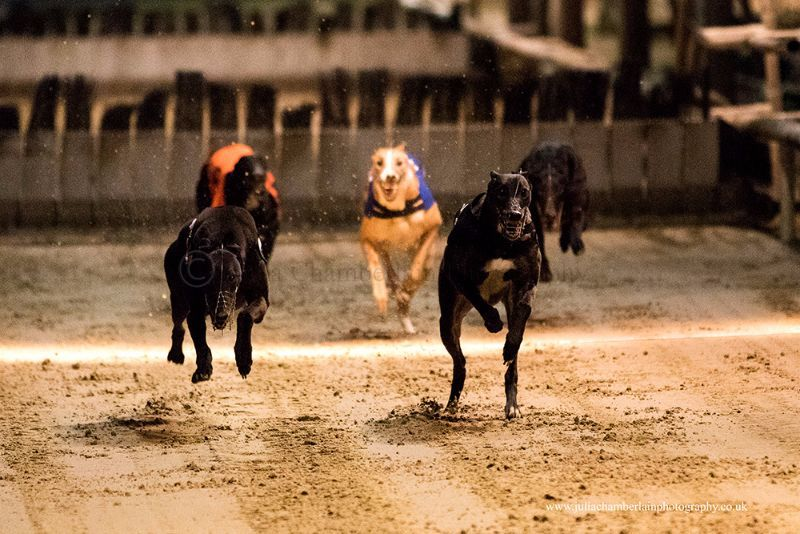 Race-8-steeplechase-18th-March-2017.-15