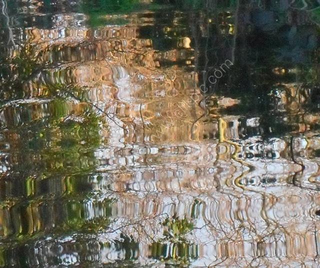 Late summer reflection II