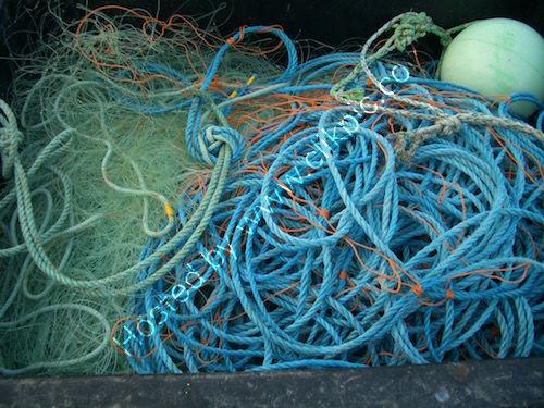 fishing ropes 3