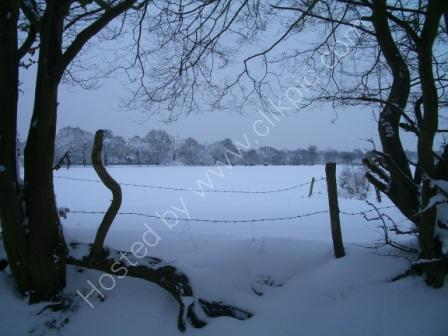 snow at pyrford  I