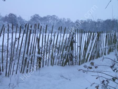 snow, fencing, Pyrford surrey photograph