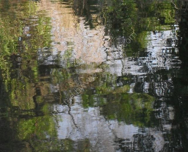 Late summer reflection I