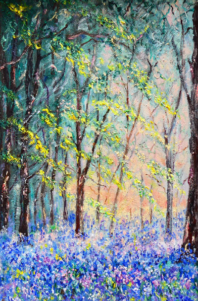 BLUEBELLS - MORNING LIGHT