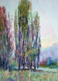 POPLARS IN SPRING  OIL