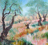 THE OLD OLIVE GROVE