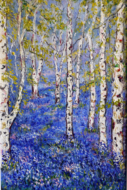 SILVER BIRCH WITH BLUEBELLS