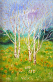 SILVER BIRCH WITH DAFODILS