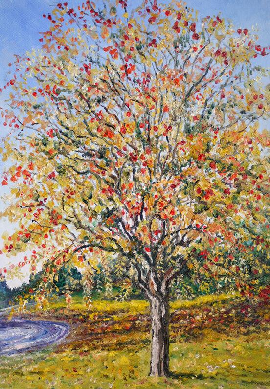 """""""THE ROWAN TREE -AUTUMN"""""""