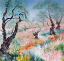 THE OLD OLIVE TREES - OIL