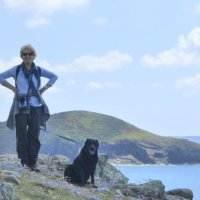 Pembrokeshire 2015