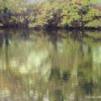 River Reflections III