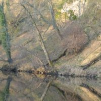 River Reflections VI