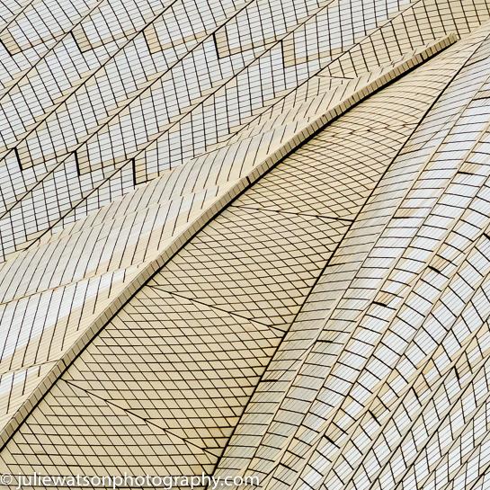 0298-1Sydney Opera House Detail