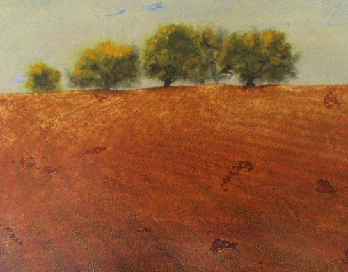 Devon soil