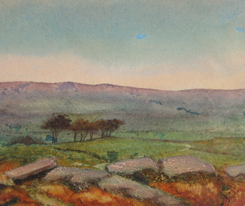 Dartmoor, Near Tavistock