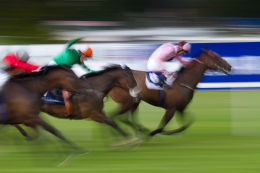 Race Day - Leopardstown